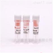 SPA101羊抗人IgG(纯化) 抗原IgG二抗