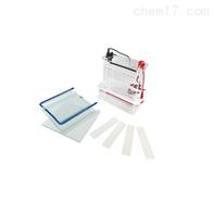 JY-SCZ6垂直电泳槽