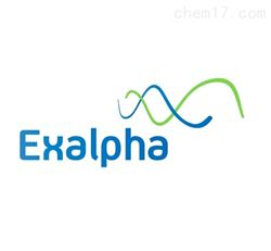 ExalphaExalpha 特约代理