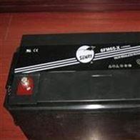 6FM65-X威神蓄电池6FM系列全国联保