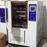 YSHS-010A恒温恒湿试验箱