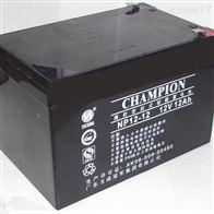 12V12AH冠军蓄电池NP12-12经销商