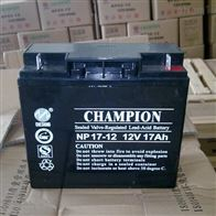 12V17AH冠军蓄电池NP17-12经销商