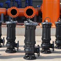 100-600WQ德能泵业提醒大家潜污泵检修注意周期