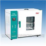 电热鼓风干燥箱250°C(E型)矿石分析