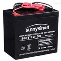 12V55AH赛能蓄电池SNT12-55代理商