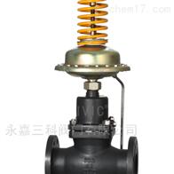 V13005V13005自力式流量压力组合阀