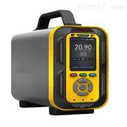 路博泵吸式手提式十八合一气体检测仪