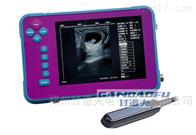 GDF-C60高清羊用B超多胎测孕方法羊怀孕B超检测