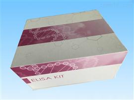 肾素定量检测试剂盒