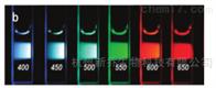 碳量子点荧光碳量子点羧基功能化 5nm