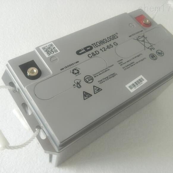 大力神蓄电池CD 12-65G LBT原装正品