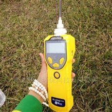 华瑞PGM-7320手持式VOC检测仪多语言显示