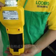 光离子检测自动清洗PGM-7320挥发性气体检测