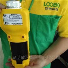 美国华瑞挥发性气体检测 VOC检测仪