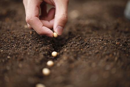 完善环境质量监测网络 宁夏布设341个土壤风险点位