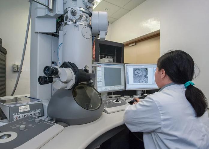 微分干涉显微镜在珠宝鉴定中的应用