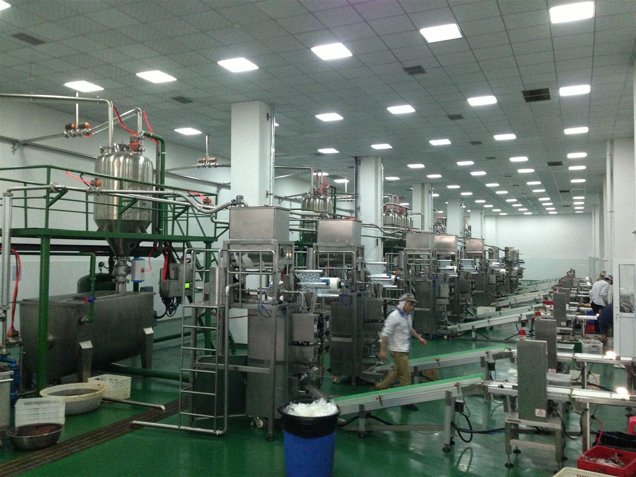 调料包自动装箱生产线——成都市大王酿造食品有限公司