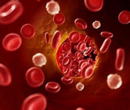 糖化血红蛋白检测标准化助力临床诊断