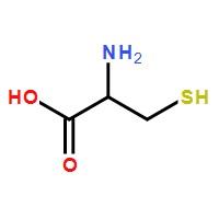 L-半胱氨酸>52-90-4>标准品
