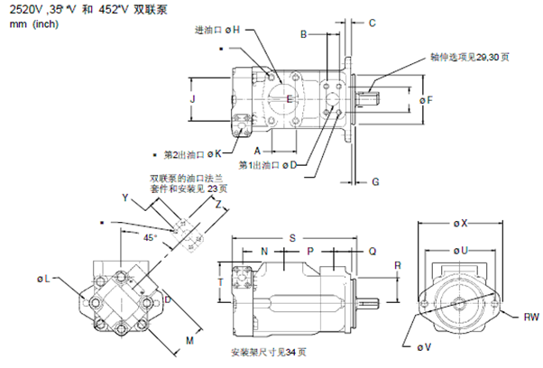 叶片泵结构图如下图片
