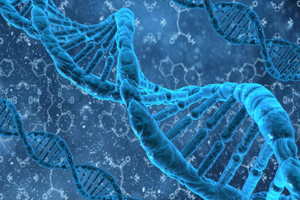 基因分子结构图