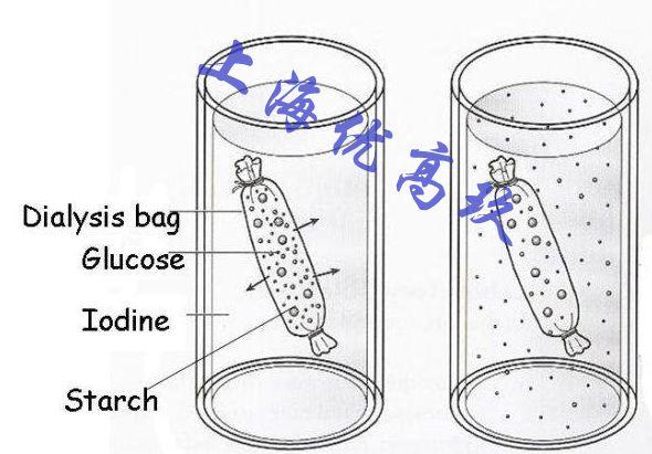 透析袋\/透析膜工作原理_Spectrumlabs,优高玖,透析膜原理,半透膜_仪器文献_中国化工仪器网