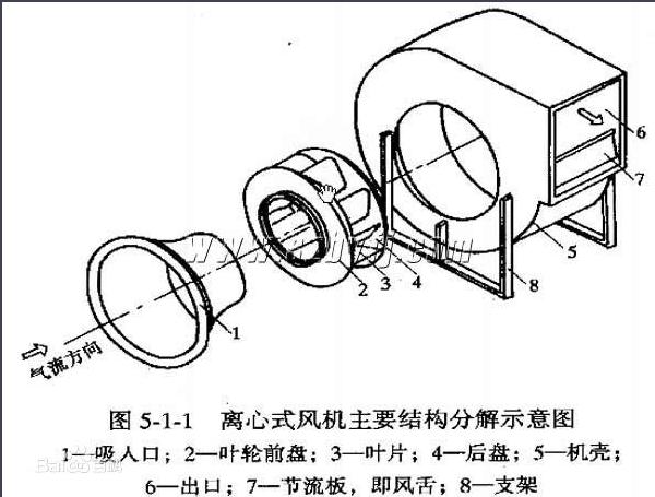 蜗牛的结构图和作用
