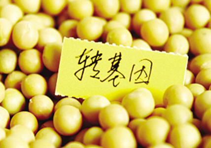 中国 手机 转基因/(图片源于视频中国)