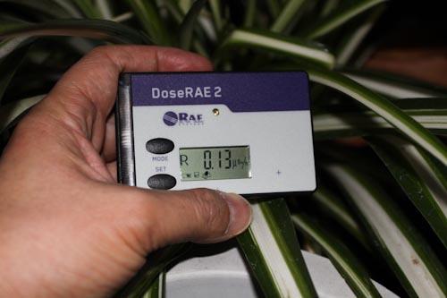 电子直读式χ、γ个人监测仪测量吊兰辐射单量