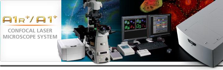 <strong>Nikon尼康显微镜 A1+/AR1+共聚焦激光显微镜系统工作原理</strong>