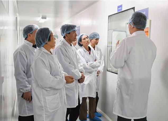 GMP制药厂认证