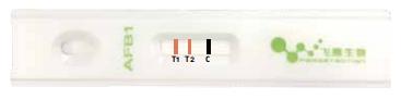 双T线检测技术