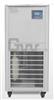 DLSB-30/30低温冷却液循环泵/ DLSB-30/30 低温循环泵