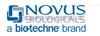 Novus抗体
