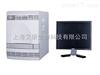 美國ABI 7300型熒光定量PCR儀