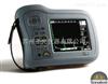 SITESCAN D20英国声纳超声波探伤仪