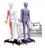 多媒体人体针灸穴位发光模型