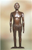 170CM针灸模型|仿古铜人针灸模型