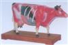 销售牛体针灸模型