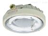 连云港CCD96免维护防爆节能灯,应急环形荧光灯
