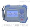HDGC3901S蓄电池内阻测试仪