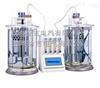 泸州特价供应CHK-12579 润滑油泡沫特性测试仪