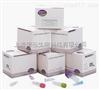 转基因植物Sad1基因PCR检测试剂盒