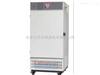 Labonce-150CSD药品稳定性试验箱
