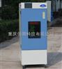 CSH-GD药品强光照射试验箱