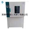LBT熱空氣老化箱/控溫方式