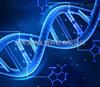 上海基因芯片实验