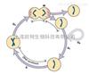 上海细胞增殖实验