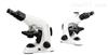 摄像生物显微镜B302